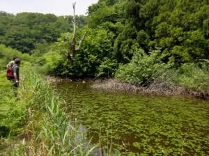 上部ため池